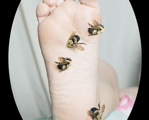 17)foot with bees FINAL copy